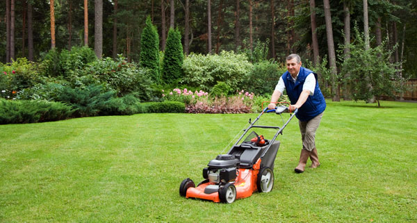 mowing-new-lawn