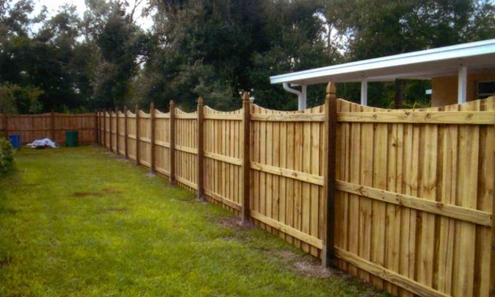 fence-wren-1030x685